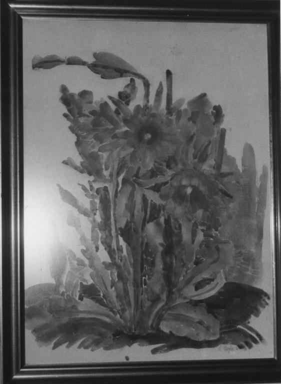 A. Stegler 1930. Kaktus